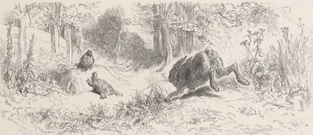 On voit l'illustration de la fable le lievre et la tortue par Gustave Doré.
